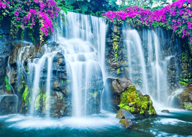 20 Gorgeous Hd Waterfall Wallpapers: Waterfalls In India