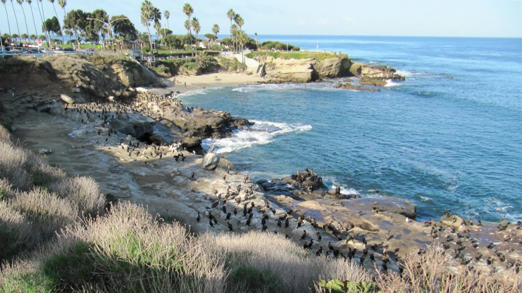 Secluded Beaches In San Diego Ca