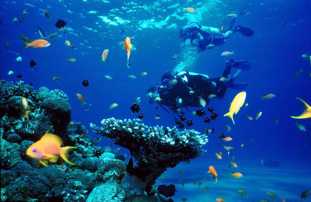 Scuba-Diving-dubai
