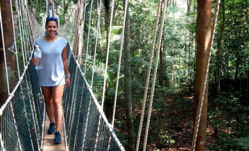 Taman Negara National Park Jungle Trekking
