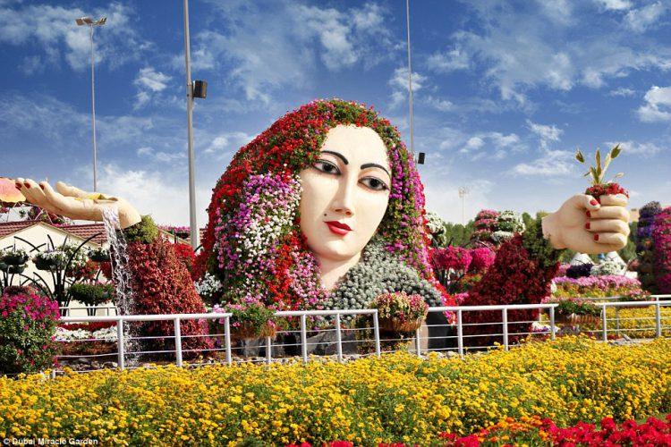 Floral Beauty - Miracle Garden Dubai