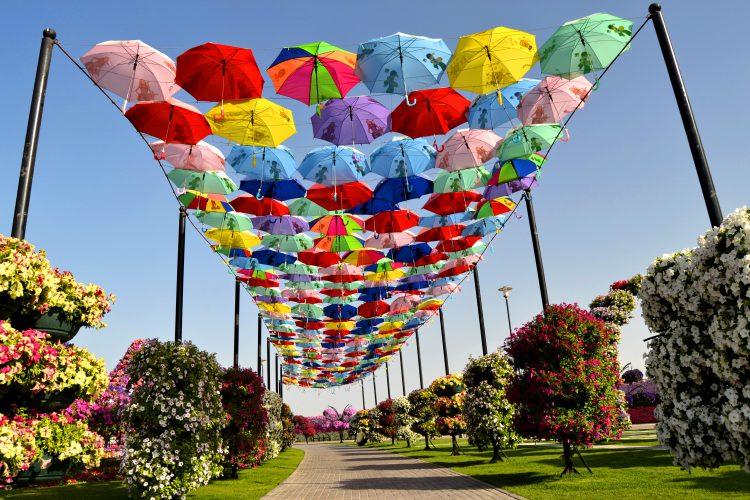 umbrela-dubai-miracle-garden