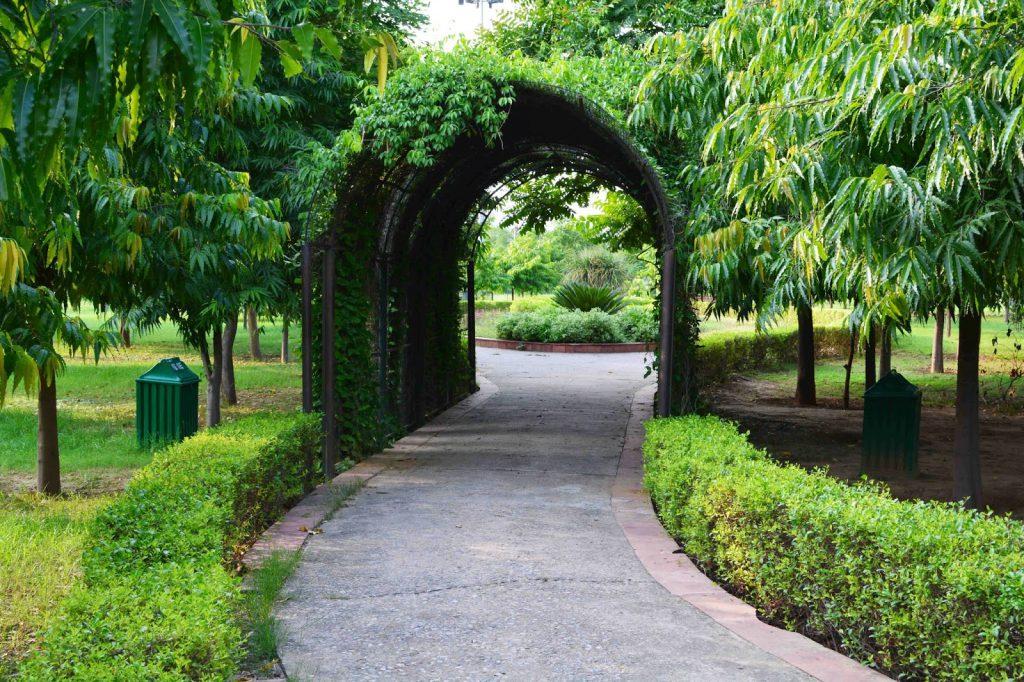 Jahanpana City Forest