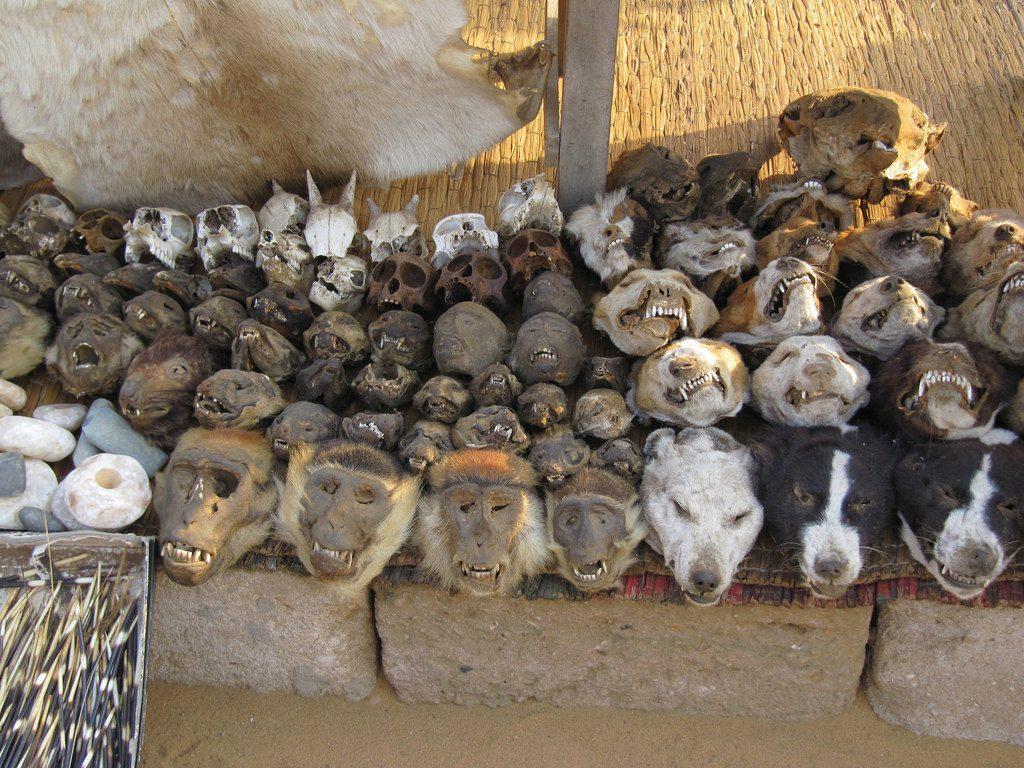 Lome Voodoo Market